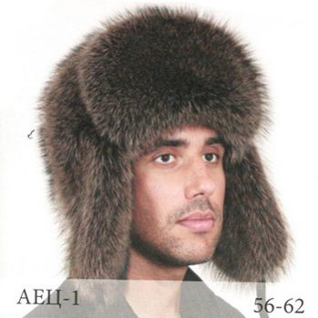 аец-1